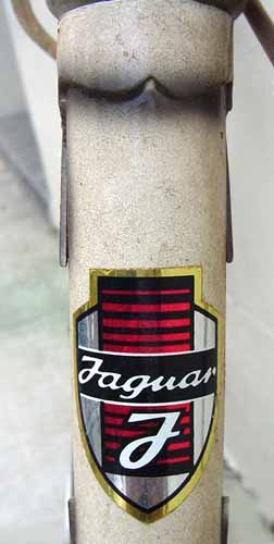 jaguarFCbg.jpg
